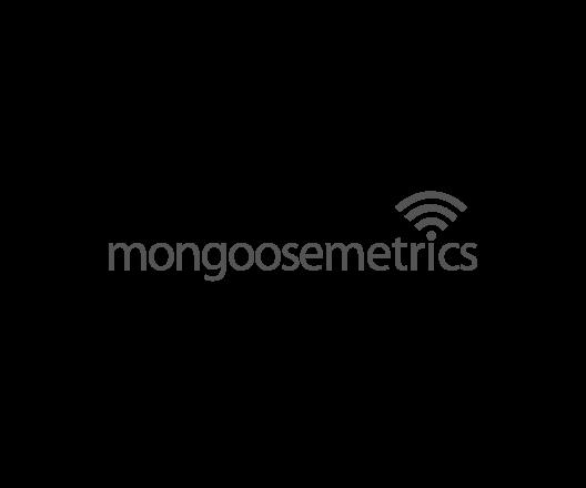 mongoose-metrics-logo