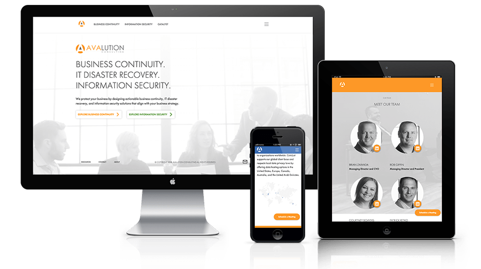 Software & Consulting Web Design